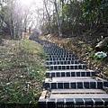 22 文山步道 第四段.jpg