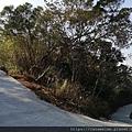 11 文山步道 第二段.jpg