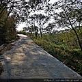 10 文山步道 第一段.jpg
