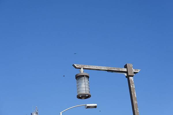 江之島到處都是老鷹在飛,可惜太遠了拍不到,原來日劇裡的老鷹叫聲是真的XD