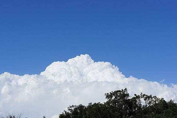 積雨雲,上次聽同事說這是代表要下雨了??(後來傍晚真的下了)