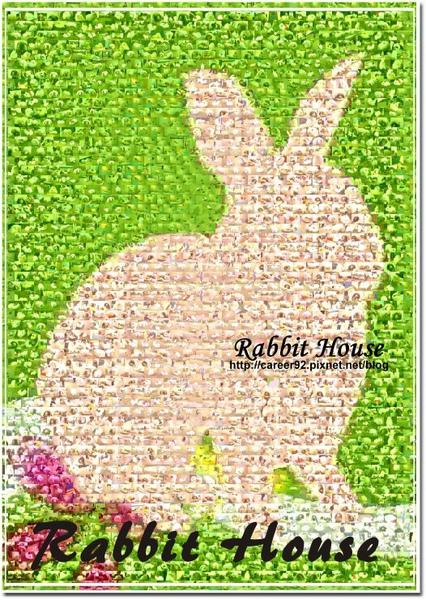兔寶蒙太奇..jpg