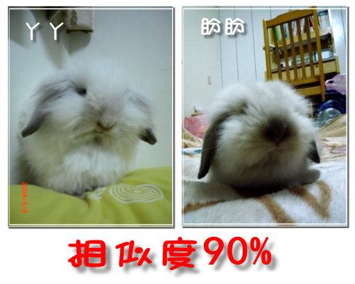 相似度90%.jpg
