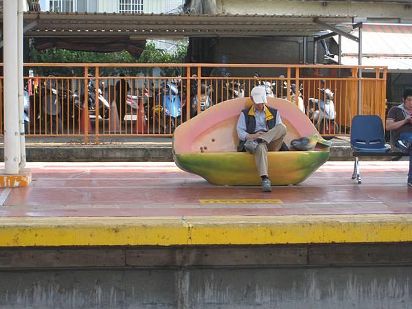 斗六車站的木瓜