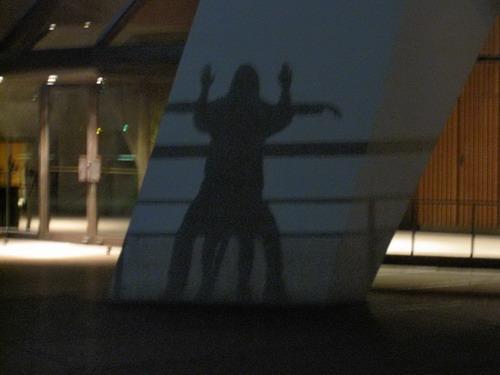 Opera House Shadow