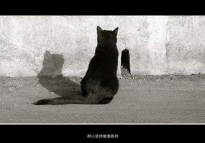 耐心坚持就是胜利_副本