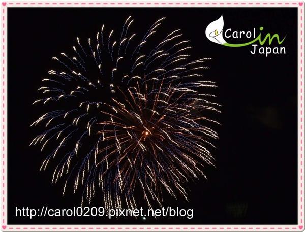 DSCF3479.jpg