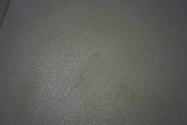 DSC07384