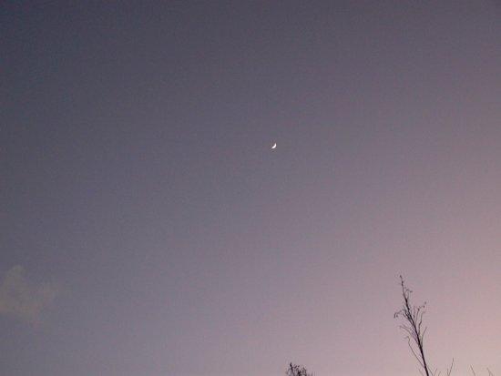 流星武陵-43.JPG