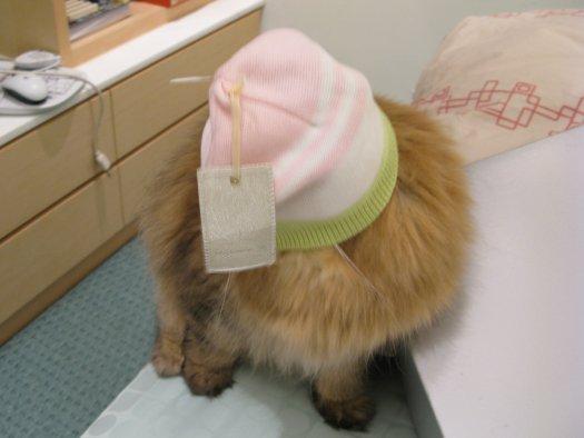 小孩帶帽子-小歐.jpg