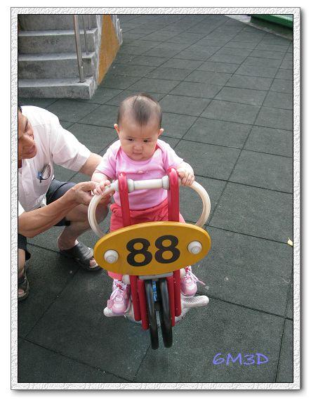 6M03D-10.jpg