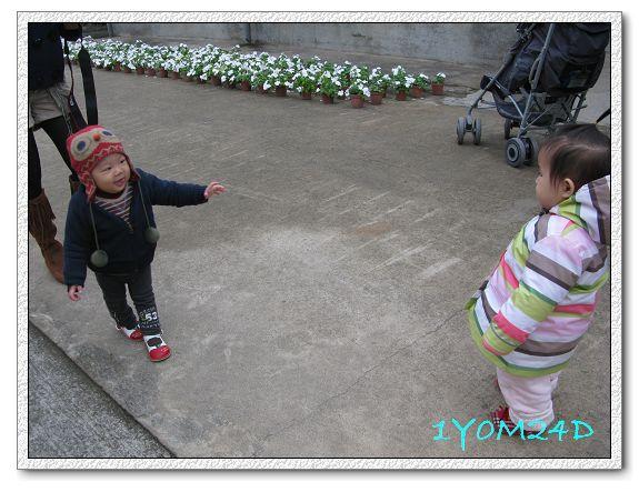 1Y0M24D-002.jpg