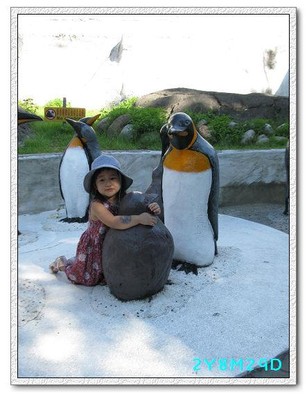 2Y08M29D-動物園08.jpg