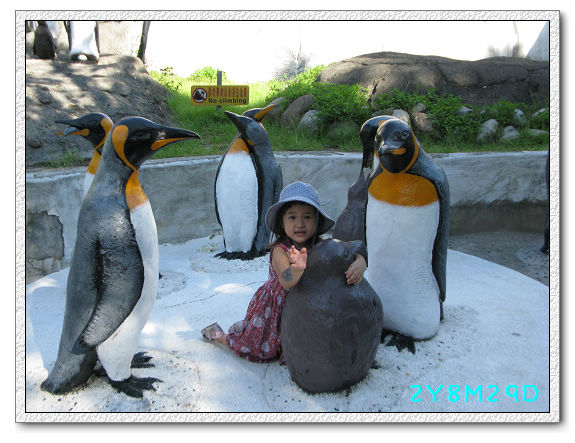 2Y08M29D-動物園09.jpg