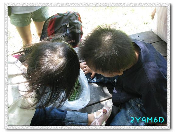 2Y09M06D-武陵農場27.jpg