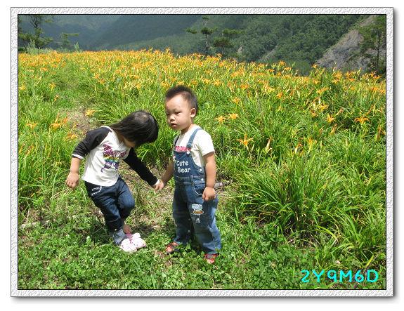 2Y09M06D-武陵農場45.jpg