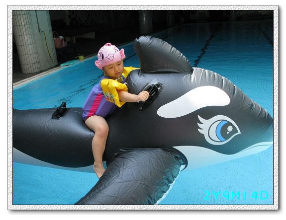 2Y09M14D-大鯨魚02.jpg