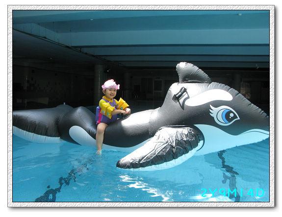 2Y09M14D-大鯨魚04.jpg
