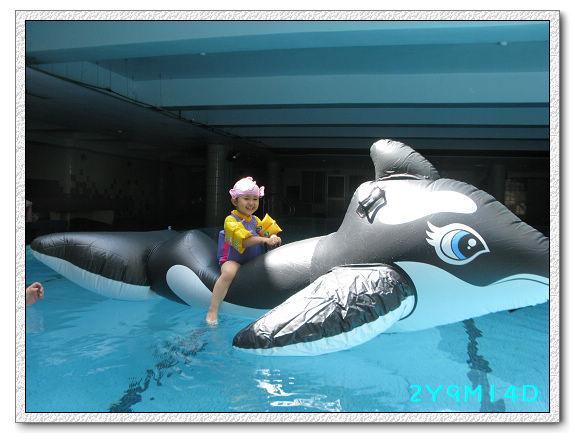 2Y09M14D-大鯨魚05.jpg