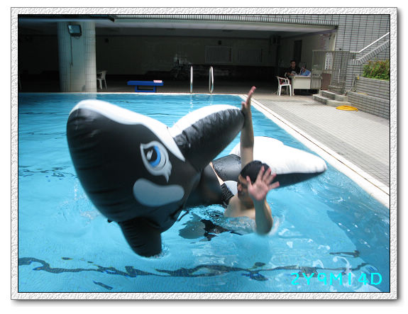 2Y09M14D-大鯨魚14.jpg