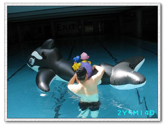 2Y09M14D-大鯨魚15.jpg