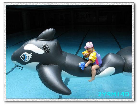 2Y09M14D-大鯨魚17.jpg