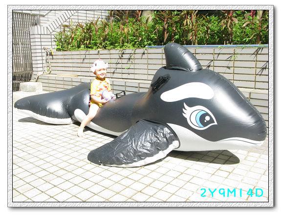 2Y09M14D-大鯨魚29.jpg