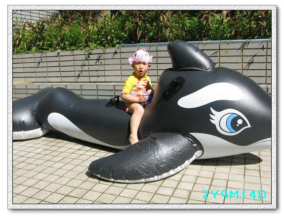 2Y09M14D-大鯨魚30.jpg