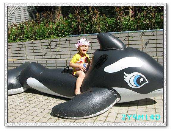 2Y09M14D-大鯨魚31.jpg