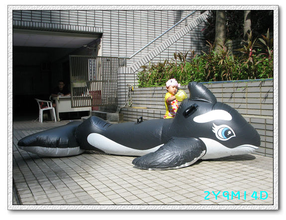 2Y09M14D-大鯨魚35.jpg