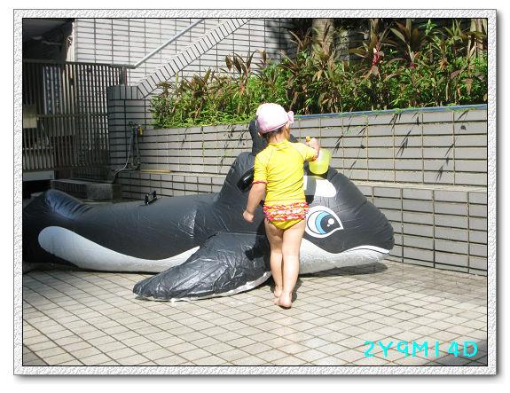 2Y09M14D-大鯨魚36.jpg