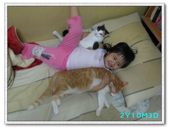 2Y10M03D-小花小橘04