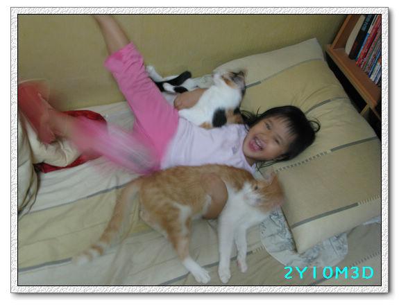 2Y10M03D-小花小橘06