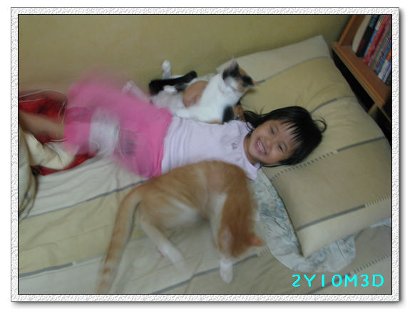 2Y10M03D-小花小橘07