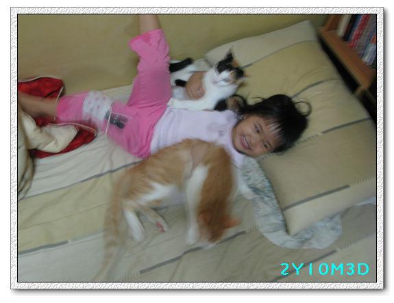 2Y10M03D-小花小橘09