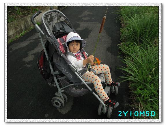 2Y10M05D-三芝農夫第二回13