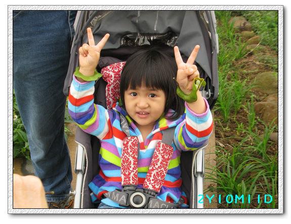 2Y10M11D-小農夫12