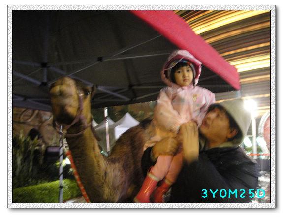 3Y00M25D-京華城05