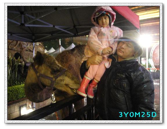 3Y00M25D-京華城06