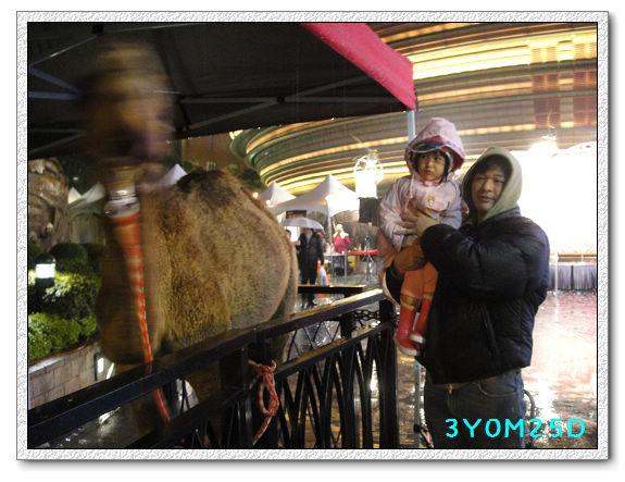 3Y00M25D-京華城09