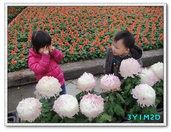 3Y01M02D-兒童樂園07