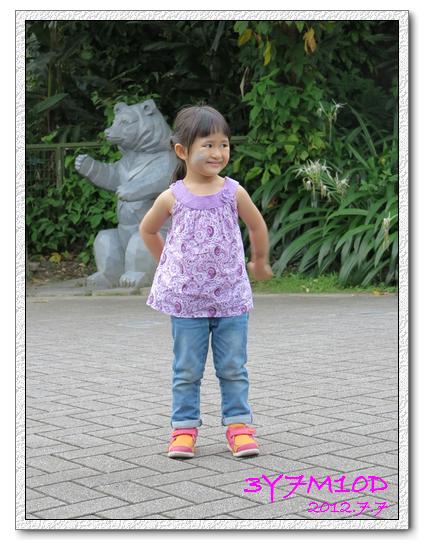 3Y7M10D-夜間動物園01