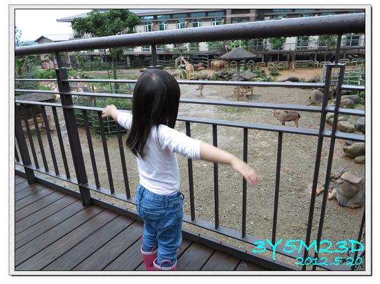 3Y05M23D-六福莊03