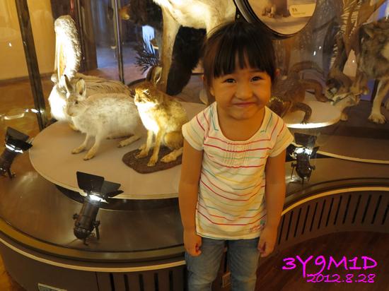 3Y09M01D-台博館-09