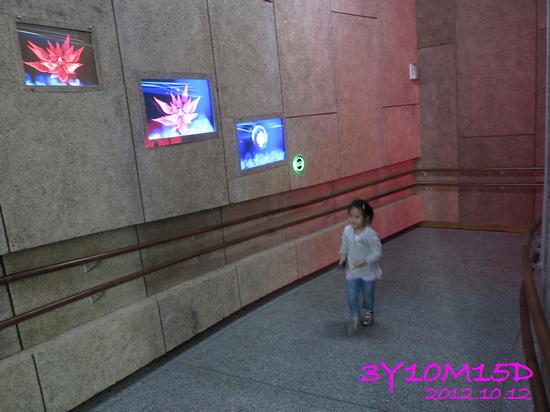 3Y10M15D-花博-12