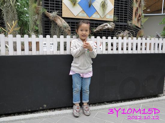 3Y10M15D-花博-31