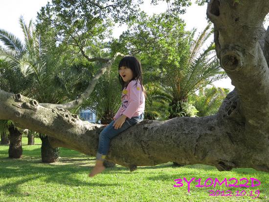 3Y10M22D-2花博公園-03