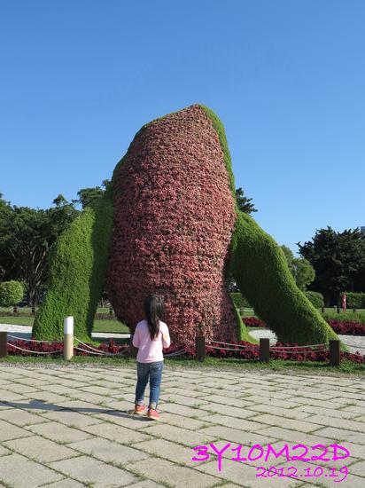 3Y10M22D-2花博公園-11
