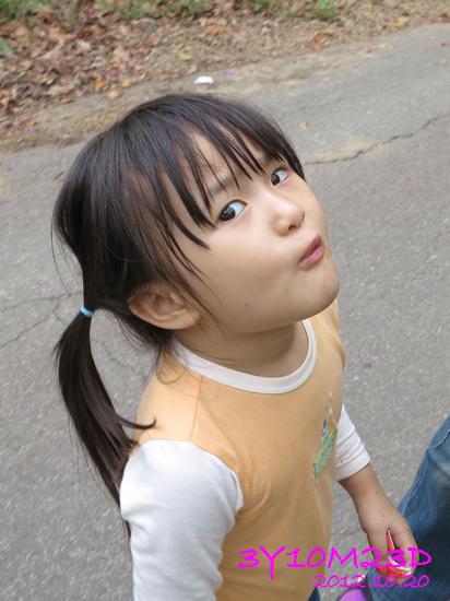 3Y10M23D-1採柿子-01