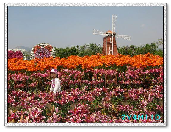 2Y04M11D-中社花園019.jpg